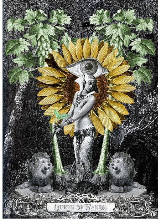 The-Tarot-Minor-Arcana-Page-80-Queen-of-Wands-514x700